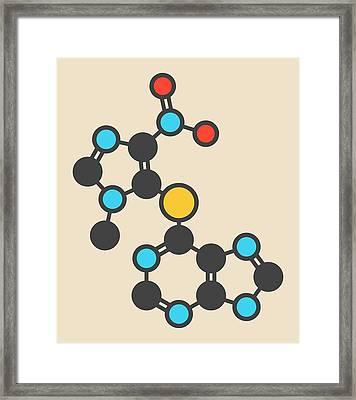 Azathioprine Immunosuppressive Molecule Framed Print by Molekuul
