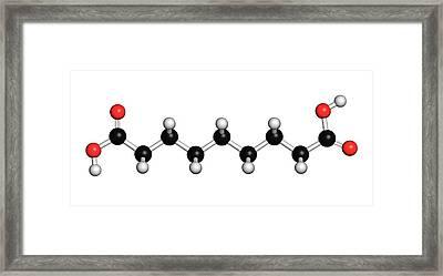 Azelaic Acid Nonanedioic Acid Molecule Framed Print by Molekuul