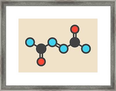 Azodicarbonamide Food Additive Molecule Framed Print