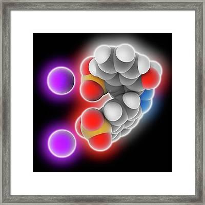 Azorubine Food Dye Molecule Framed Print by Laguna Design