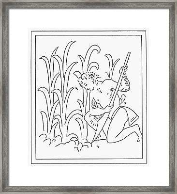 Aztec Farmer Framed Print by Granger