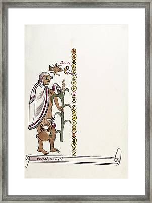 Aztec Month Etzalcualiztli Framed Print by Library Of Congress