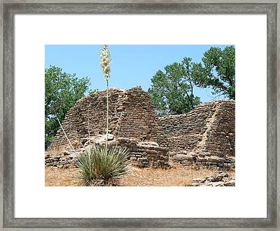 Aztec Ruins National Monument Framed Print by Laurel Powell
