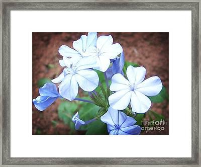 Azure Aura Framed Print