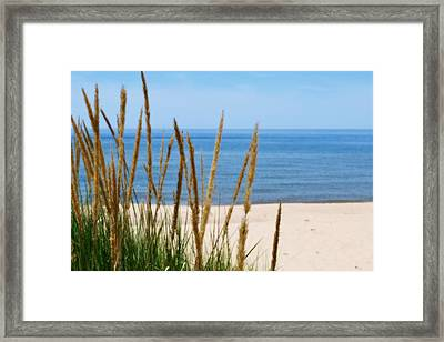 Azure Waters Framed Print by Michelle Calkins
