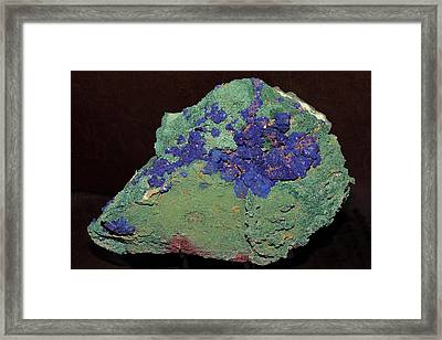 Azurite On Chrysocolla Substrate Framed Print
