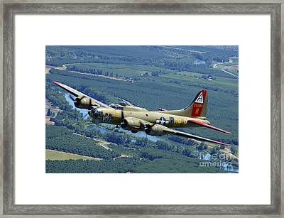 B-17 Flying Fortress Flying Framed Print by Phil Wallick
