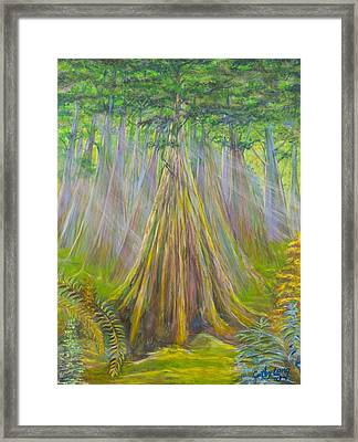 Framed Print featuring the painting B C Cedars by Cathy Long