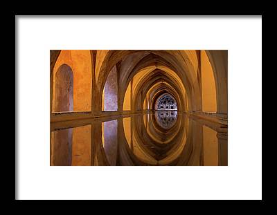 Cellar Framed Prints