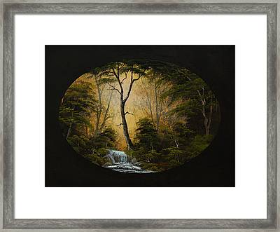 Forest Brook Framed Print by C Steele