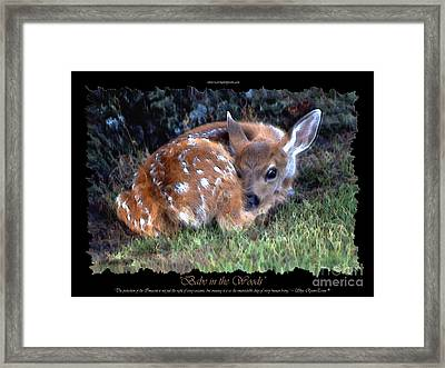 Babe In The Woods Framed Print by Skye Ryan-Evans