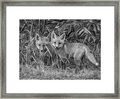 Babes In The Woods 2 - Paint Bw Framed Print by Steve Harrington