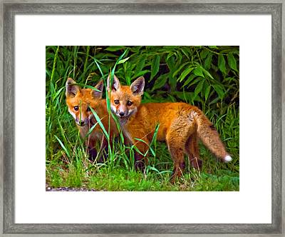 Babes In The Woods Impasto Framed Print by Steve Harrington