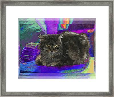 Babette Framed Print by Alice Ramirez