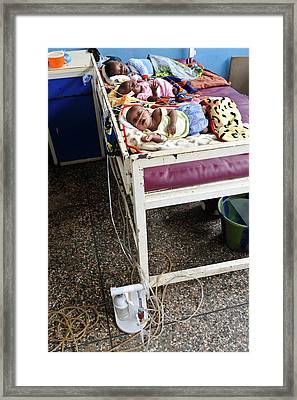 Babies In Hospital Framed Print by Matthew Oldfield