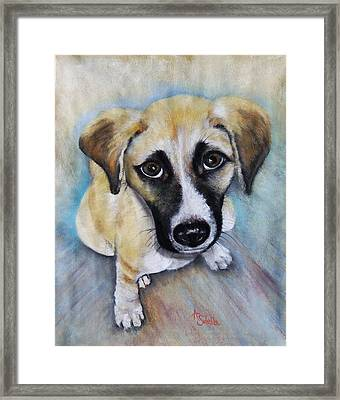 Baby Addie Framed Print