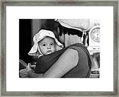 Baby Blue Bonnet Framed Print