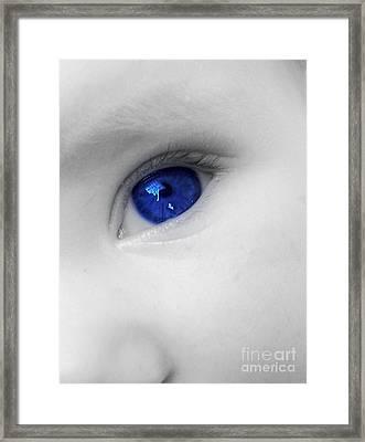 Baby Blue Framed Print by Nina Ficur Feenan