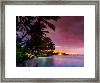 Baby Blues And Pinks Framed Print by Sean Davey