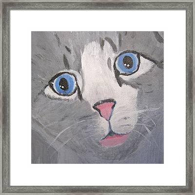 Baby Blues Framed Print