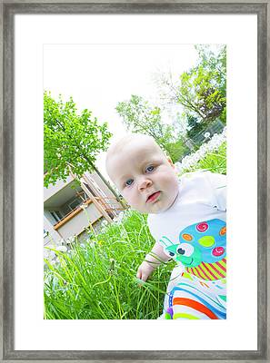 Baby Boy In A Garden Framed Print