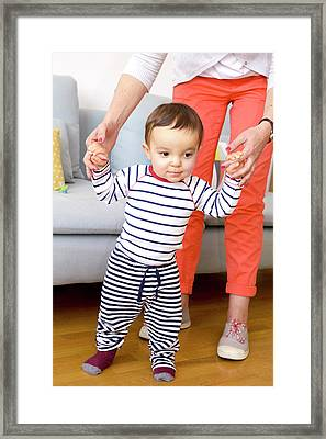 Baby Boy Learning To Walk Framed Print by Aj Photo