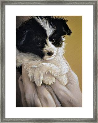 Baby Boy - Pastel Framed Print