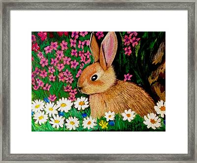 Baby Bunny In The Garden At Night Framed Print