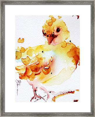 Baby Framed Print by Dawn Derman