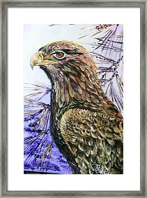Baby Eagle Framed Print