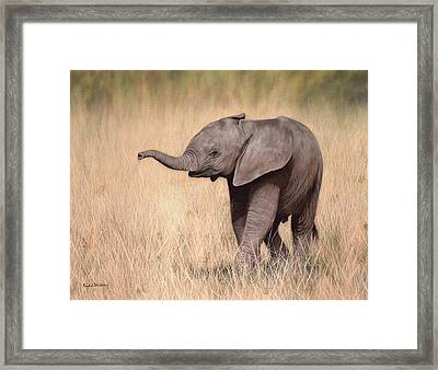 Elephant Calf Painting Framed Print