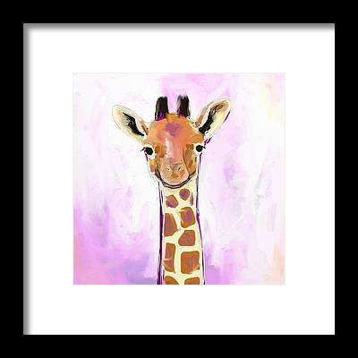 Wildlife Framed Prints