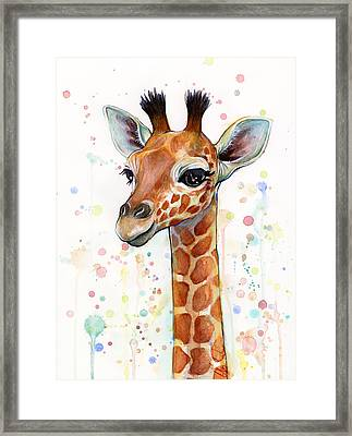 Baby Giraffe Watercolor  Framed Print by Olga Shvartsur