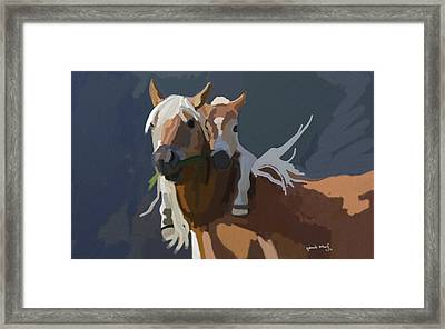 Baby Horse Framed Print by Nydia Williams