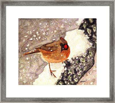 Baby Its Cold Outside Framed Print by Angela Davies