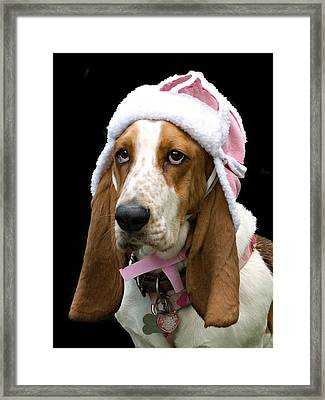 Framed Print featuring the photograph Baby  It's Cold Outside by Judy  Johnson
