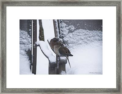 Framed Print featuring the photograph Baby It's Cold Outside by Phil Abrams