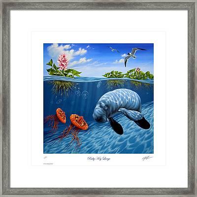 Baby Key Largo Framed Print by Philip Slagter