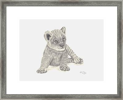 Framed Print featuring the drawing Baby Lion by Patricia Hiltz