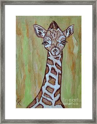 Baby Longneck Giraffe Framed Print