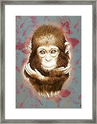 Baby Monkey - Stylised Drawing Art Poster Framed Print