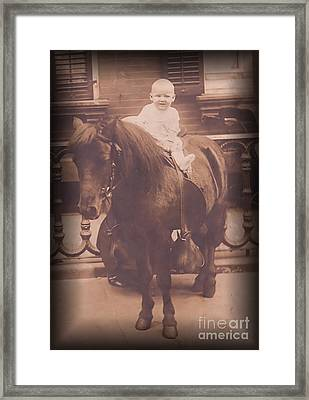 Baby On Pony Framed Print by Anne Rodkin