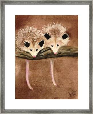 Baby Possums Framed Print