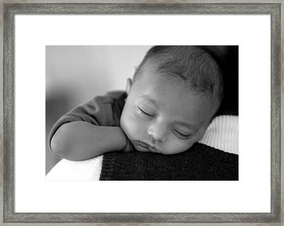 Baby Sleeps Framed Print by Lisa Phillips