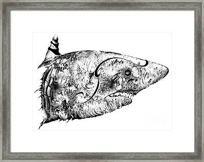 Baby Whit Distorted Framed Print by Penelope Fedor