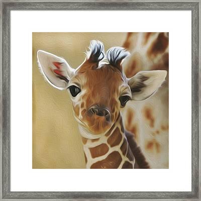 Baby Zara Framed Print