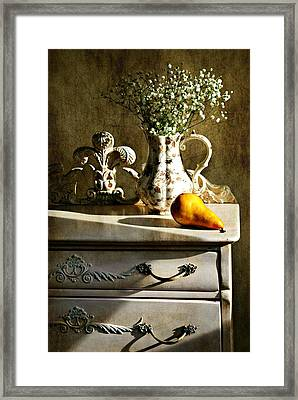Baby's Breath Framed Print by Diana Angstadt