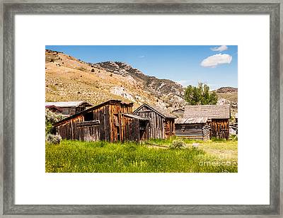 Bachelors Row Framed Print by Sue Smith