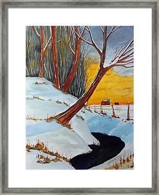 Back 40 Creek Framed Print