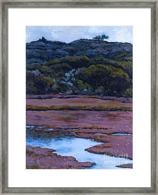 Back Bay At Morro Bay Framed Print